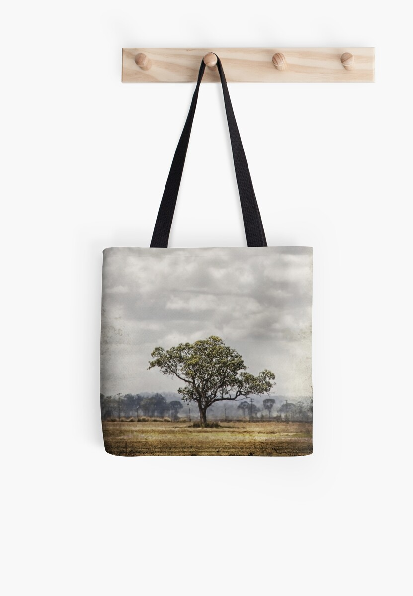 One Tree Plain by scottimages