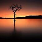 Loch Lomond Afterglow by Grant Glendinning