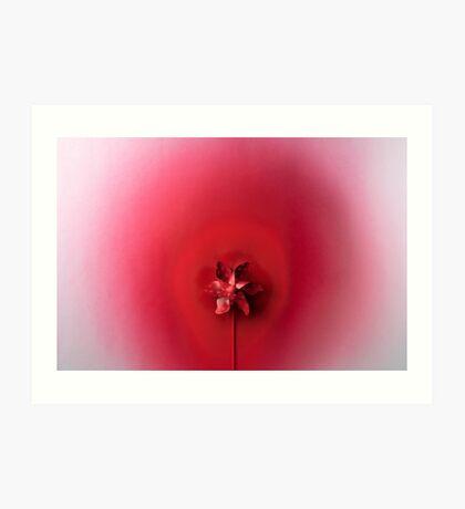 Rote Explosion Kunstdruck