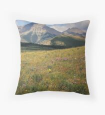 The Sound of Music Throw Pillow