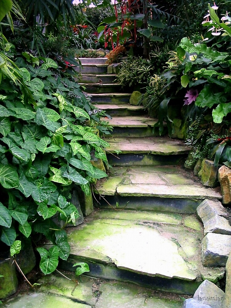Stairs by ienemien