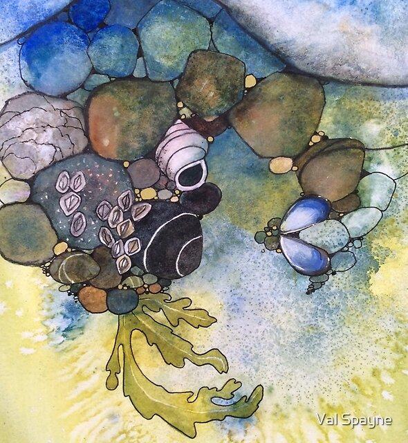 Rock Pool by Val Spayne