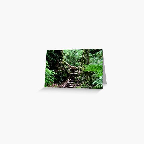 Rainforest Steps Greeting Card