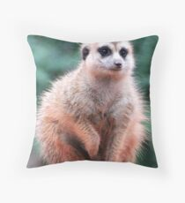 To The Untrained Eye I Might Look Big, But I Would Prefer The Word Fluffy :) Throw Pillow