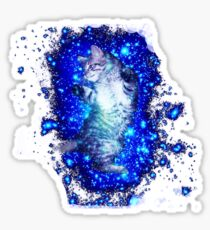Psychedelic Galaxy Cat in space Sticker