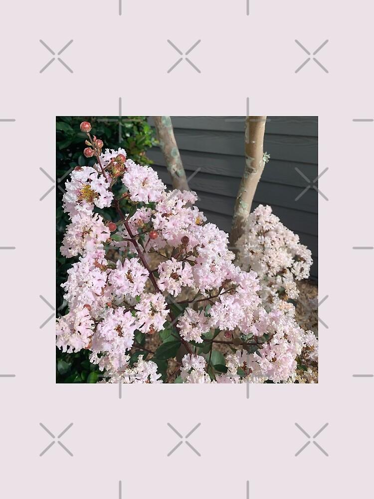 Pink Crepe Myrtle  by Naturefae