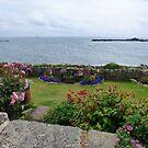 Garden by the sea by nealbarnett