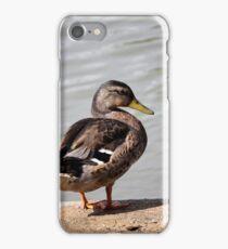 ducks on lake iPhone Case/Skin