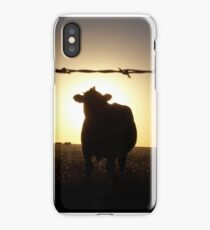 Cow at Sunset iPhone Case/Skin