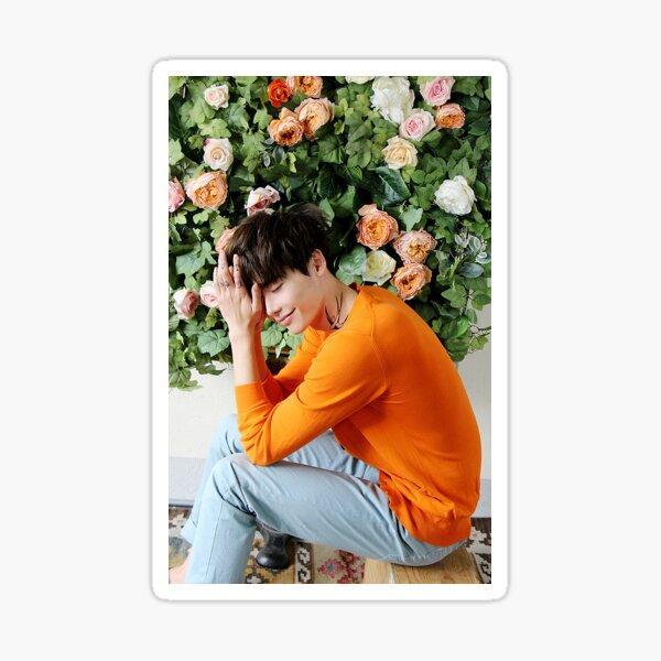 Lee Jong Suk phone case #2 (white border) Sticker
