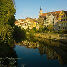 Postcard from Tübingen, Germany by L Lee McIntyre