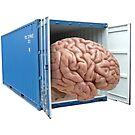 Brain Box by Artworksy