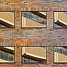 Windows in Windows by cclaude