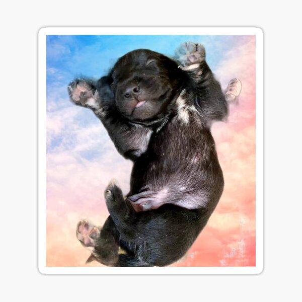 Puppy Dreams Sticker