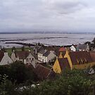 A View of Culross and the Firth of Forth UK by biddumy
