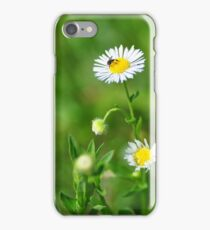 Insect on tiny daisy iPhone Case/Skin