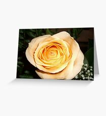 Only a Rose, Vancouver, BC Greeting Card