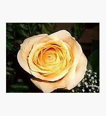 Only a Rose, Vancouver, BC Photographic Print