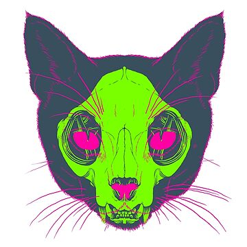 Cat X-ray von joshbillings
