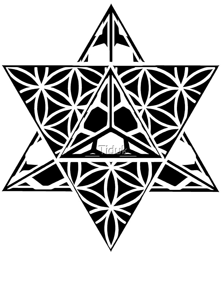 MetaHedron by Tiduk
