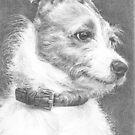 Little dog... Big character! by Sami Thorpe