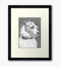 Little dog... Big character! Framed Print
