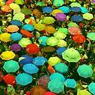 Color by Thet Htut