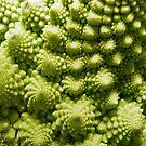 Cauliflower fractals by bubblehex08