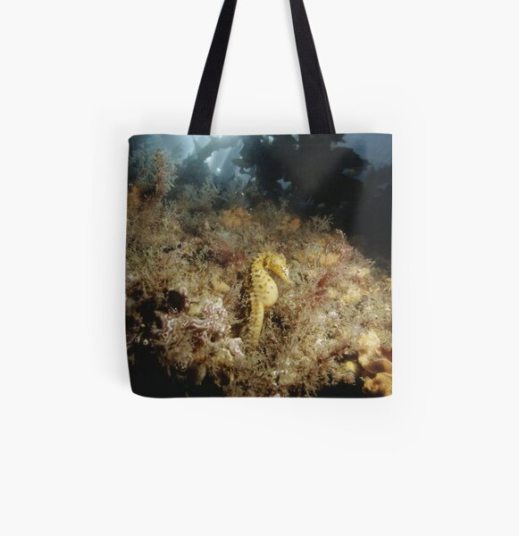 Big-bellied Seahorse, Balmoral Beach All Over Print Tote Bag