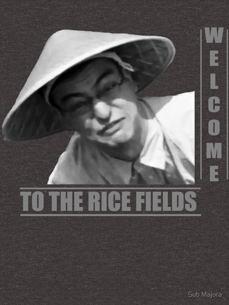 WELCOME TO THE RICE FIELDS - Clean version by maxyman245