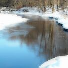 The Calm on Otter River  by Rebecca Bryson