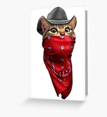 CAT ROBBER Greeting Card