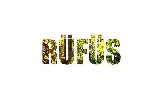 RÜFÜS / RÜFÜS DU SOL by thrxxd
