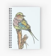 Lilac Breasted Roller Bird Spiral Notebook