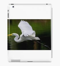 Grace In Flight iPad Case/Skin