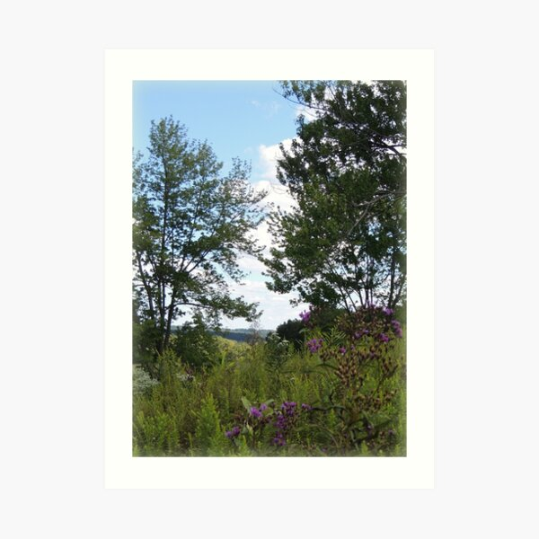 View of the Hills from the Chaparral Prairie  Art Print