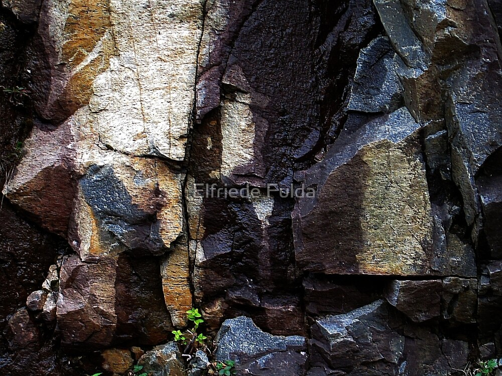 Rocks ! by Elfriede Fulda