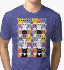 Only A Glaring Of Cats Tri-blend T-Shirt