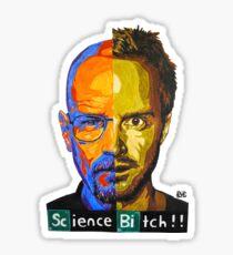 Breaking Bad Science Bitch!!! Sticker