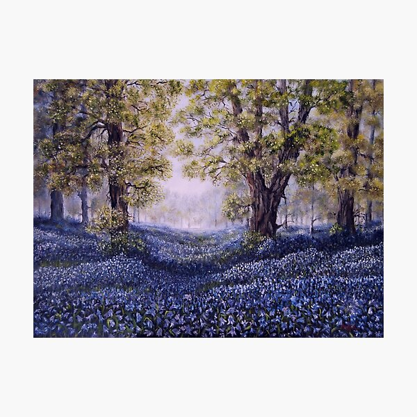 """""""Mary's Bluebells"""" - oil painting Photographic Print"""