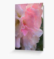 Ruffled Begonia - Digital Watercolor Greeting Card