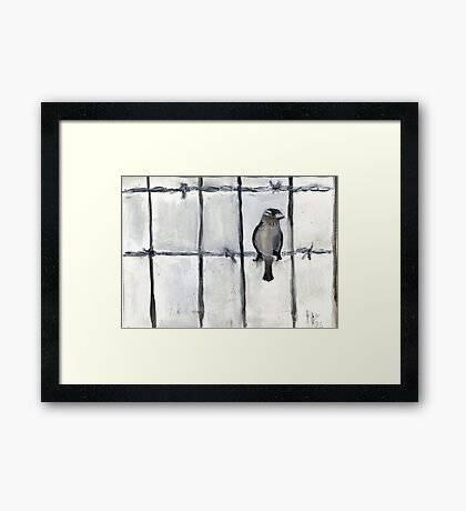 Bird (On A Barbed) Wire Framed Print