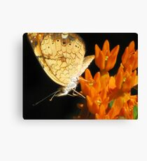 Hearts On The Wing Canvas Print