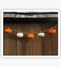 String of Pumpkins Sticker