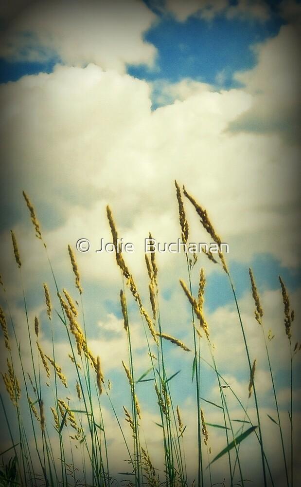 Daydream by © Jolie  Buchanan