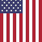 American Flag (Vertical) by Rich Anderson