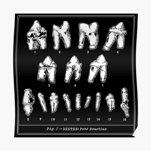 The Tooth Canvas Poster