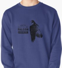 You've Gotta Be Falcon Kidding Me Pullover
