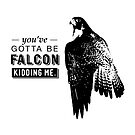You've Gotta Be Falcon Kidding Me by rustyfeathers