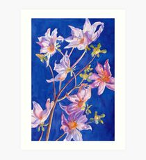 Wild Dahlia in Watercolor  Art Print